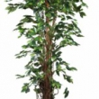 Flame Retardent Ficus Tree - Replica Tree