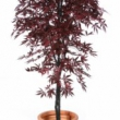 Flame Retardent Maple Burgundy Artificial Tree