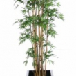 Bamboo Tree Artificial with Natural Trunk 2