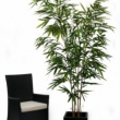 Bamboo Tree Artificial with Natural Trunk 3