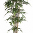 Bamboo Tree Artificial with Natural Trunk 6