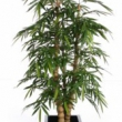 Bamboo Tree Artificial Natural Trunk 9