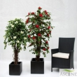Bouganvillia Tree Artificial with Natural Trunk 14