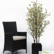 Bouganvillia Tree Artificial with Natural Trunk 15
