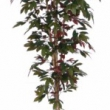 Capensia Nitida Tree Artificial with Natural Trunk 17