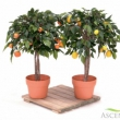 Artificial Natural Trunk Tree Orange Tree Small 43