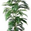 Areca Palm 6ft Tree Artificial