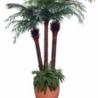 Replica Phoenix Palm Tree Artificial