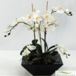 Replica Orchid in planter