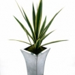 Artificial Yucca Green  Florence