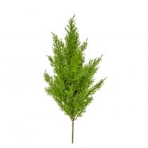 External Topiary Cedar Mini Pine Light Green 54cm ASCTL600G