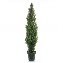 External Topiary Cedar Mini Pine SF Plastic 150cmTL7778 (1)