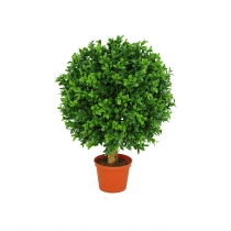 External TopiaryBuxus Ball 20cm 25cm 35cm 40cm 45cm and 50cm (1)