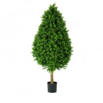 External TopiaryExternal Topiary New Buxus Tower A 60cm 90cm 120cm or 150cm ASCBT2 (1)