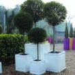 External Planter Chelsea 27