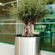 External Planters Stainless Steel 8