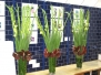 Flower Displays for Offices Hotels and Restaurants