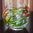 Fishbowl with Cala Lillies