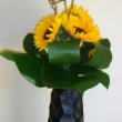 Sunflower with Aspidistra vase