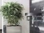 Planters Cool Metal