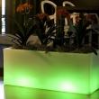 Trough Illuminated Planter 11