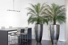 Planters Natural Range