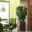 Natural Planters Wooden 14
