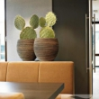 Natural Planters 16