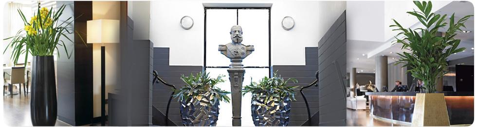 Hotel Plant Displays