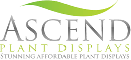 Ascend Plant Displays